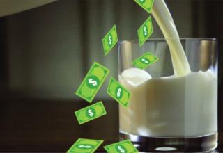 Dairy Farm Budgeting