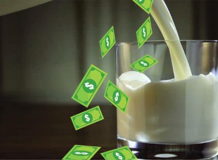 Dairy Plant Budgeting